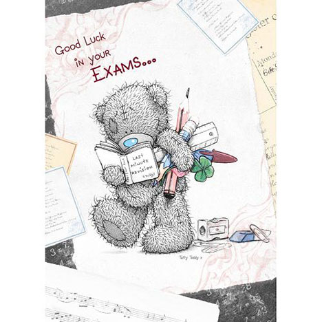 Good Luck In Your Exams Me to You Bear Card  £1.79
