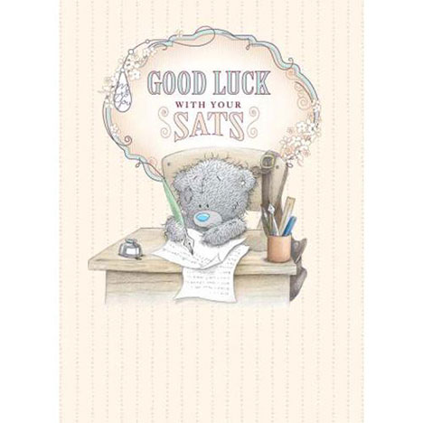 Good Luck With Your SATs Me to You Bear Card  £1.79