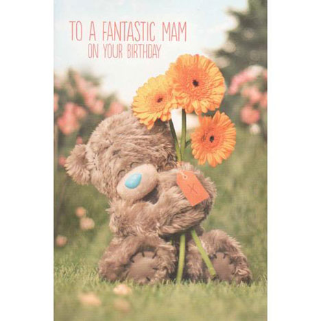 Mam Birthday Photo Finish Me to You Bear Card  £2.49