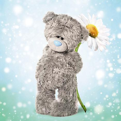 3D Holographic Tatty Teddy With Daisy Me to You Bear Birthday Card  £2.99