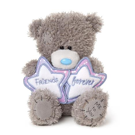 "5"" Friends Forever Stars Me to You Bear  £7.99"
