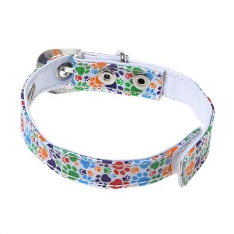 Tatty Puppy Me to You Bear Collar   £2.99