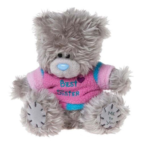 "5"" Best Sister Me to You Bear  £7.99"