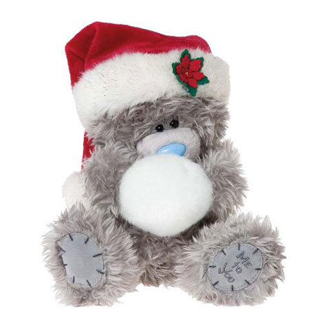 "8"" Me to You Christmas Bear with Santa Hat & Snowball  £14.99"