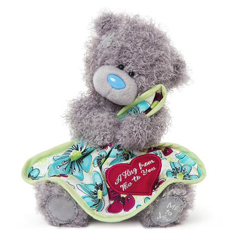 "7"" Hug From Me To You Bear  £10.00"