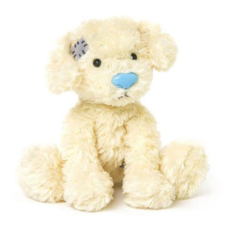 "4"" Spartacus the Labradoodle My Blue Nose Friend   £5.00"
