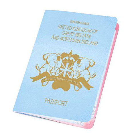 Tatty Puppy Me to You Bear Passport  £2.99