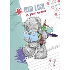 Good Luck in Exams Me to You Bear Card