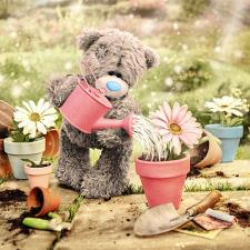 3D Holographic Watering Plants Me to You Bear Card