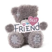 "5"" Holding Best Friend Banner Me to You Bear"