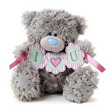 "8"" I Heart U Bunting Me to You Bear"