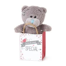 "3"" Someone Special Me to You Bear In Gift Bag"