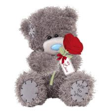 "7"" Holding Rose Me to You Bear"