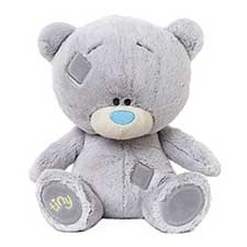 "10"" Personalised Tiny Tatty Teddy"