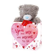 "5"" You & Me Are Meant To Be Me to You Bear In Bag"